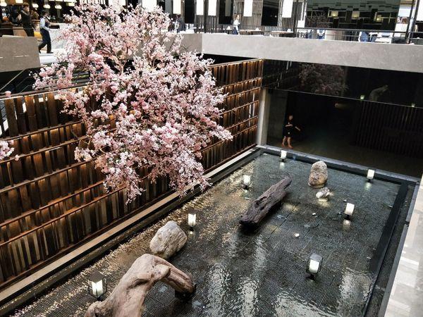 鬧區中的桃花源 CP值超高的德立莊中庭餐廳