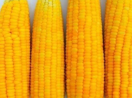 Microwaved Fresh Baked Corn