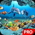 Fish Live Wallpaper 3D Aquarium Background HD :PRO icon