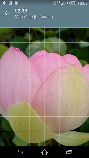 Jigsaw Puzzle: Flowers screenshot 8