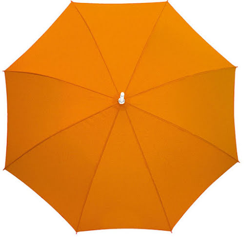 Automatic Stick Umbrella in Blue