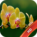 Orchid Live Wallpaper icon