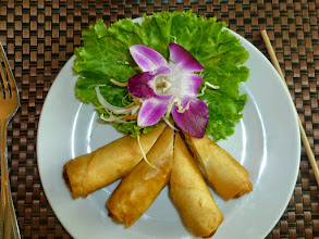 Photo: For lunch we had Spring rolls.  I loved how they were presented.