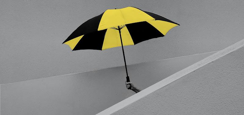 l'ombrello di Canguro