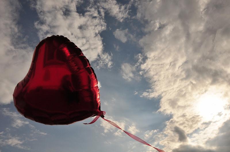 Un cuore per il cielo di Ilaria Bertini