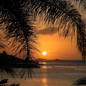 A Jamaican Sunset by Jason Asselin - Landscapes Sunsets & Sunrises ( water, sunset, tropical, sea, jamaican )