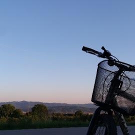 Bike ride in nature by Nina Avramov - Transportation Bicycles ( beautiful, nature, sunset, nature up close, friends, bike )