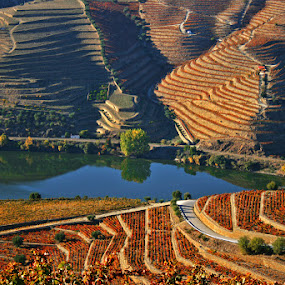 Lands of Oporto wine by Maria Alexandra Abrunhosa - Landscapes Travel