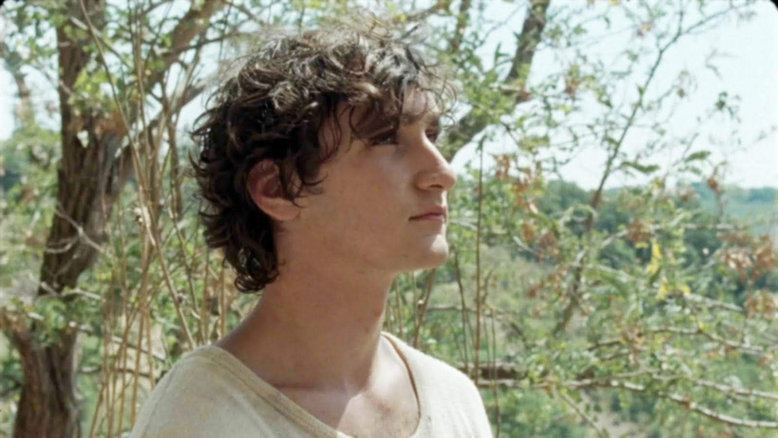 Happy as Lazzaro Official Site