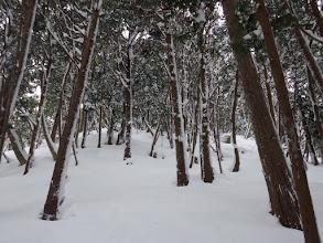 深い雪の登りが続く