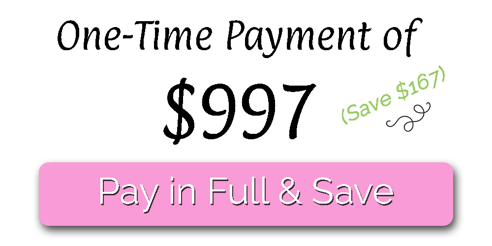 One Time Payment - Established Business