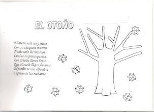 Photo: EL OTOÑO