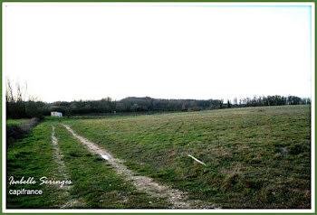 terrain à Saint-Nicolas-de-la-Grave (82)