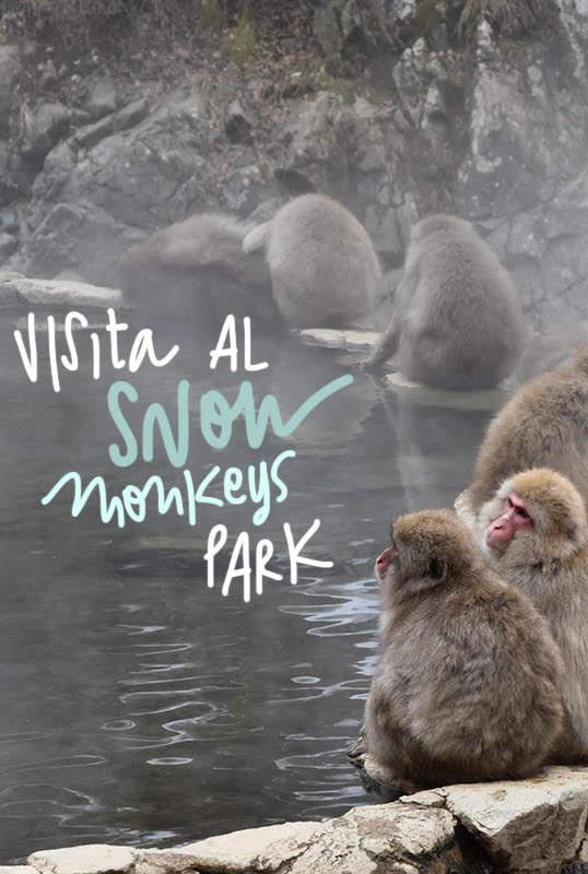 snow monkey park japón