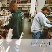 Endtroducing (Deluxe Edition)
