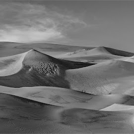 Great Sand Dunes by Fred Prince - Landscapes Mountains & Hills ( great sand dunes, alamosa )