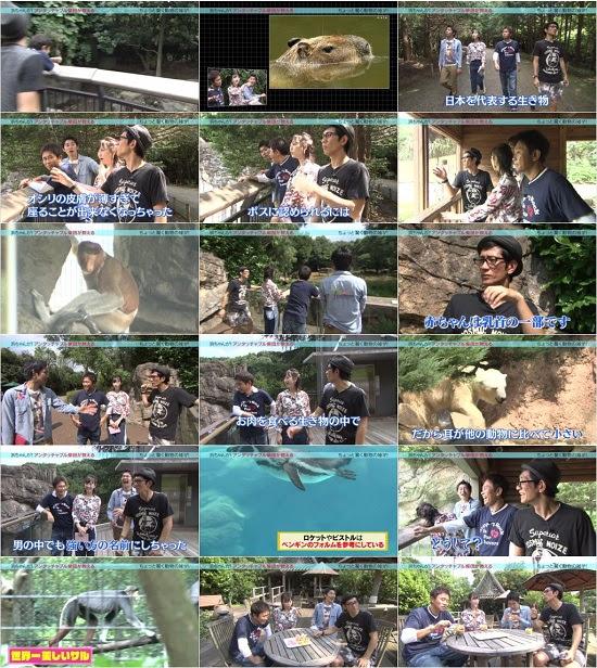 (TV-Variety)(720p) Hamachan ga! (Matsui Rena) 161109