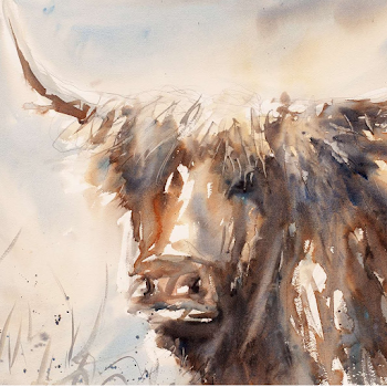 Highland cow painting art watercolour original