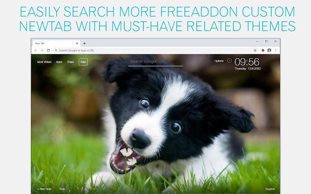 Border Collie Dog Wallpaper HD Border Collie Dogs New Tab