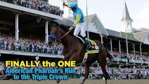 Finally the One: American Pharoah's Run to the Triple Crown thumbnail