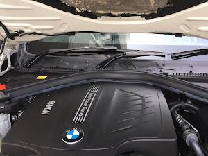 4シリーズ カブリオレ  のカスタム事例画像 BMWときなこさんの2020年01月10日15:38の投稿