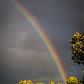 The FDR Rainbow by Rhonda Mullen - Landscapes Weather