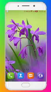 Download Purple Flower Wallpaper For PC Windows and Mac apk screenshot 15