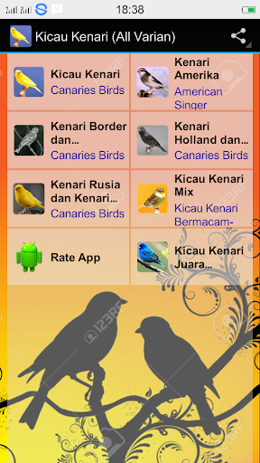 Canaries Birdsong All Varian