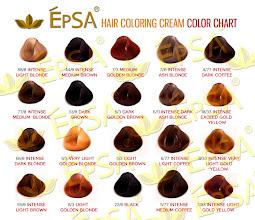 Album Archive - EpSA HAIR COLOR CHARTS