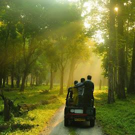 by Sambit Bandyopadhyay - Transportation Automobiles