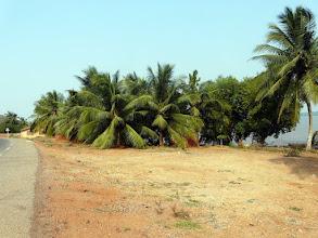 Photo: passage par la nouvelle route bitumée de Bopa, Possotomé, au bord du lac Ahémé
