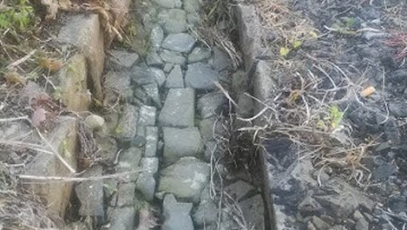the cobbles lining the older levadas