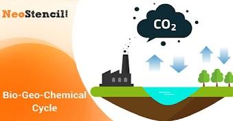 Bio-Geo-Chemical Cycle
