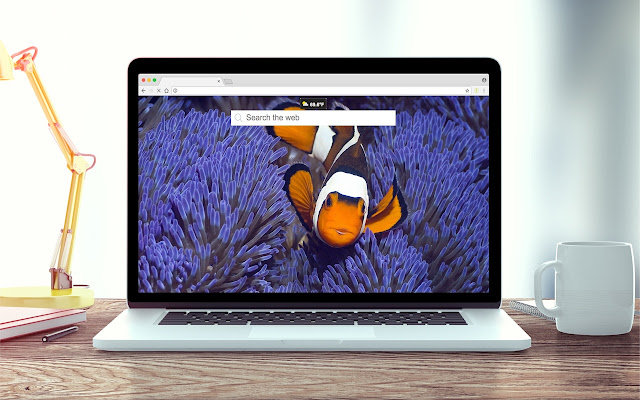 Fish Wallpapers New Tab Theme