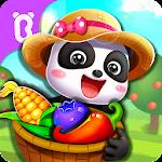 Little Panda's Dream Garden 8.40.00.11