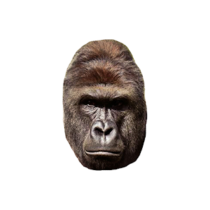 Harambe for PC and MAC