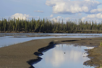 Photo: Yukon River.