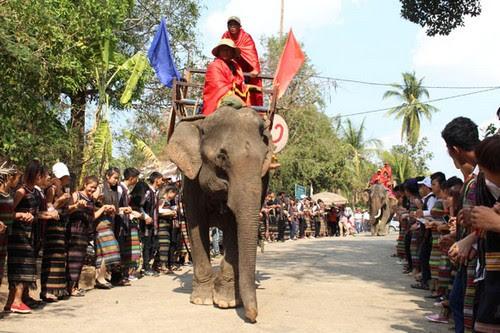Khu du lịch Buôn Đôn sôi nổi cùng lễ hội voi 4