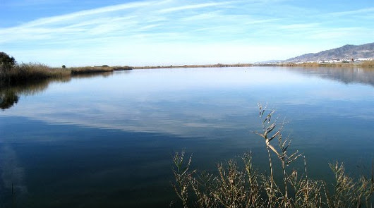 El río Adra y la Albufera renuevan el distintivo europeo de la red Natura 2000