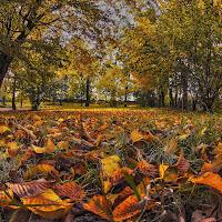 Primi giorni d'autunno di