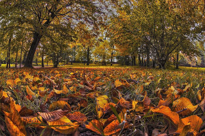 Primi giorni d'autunno di Scaletta
