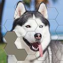 Jigsaw Hexa Block icon