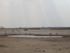 Photo: The waterhole from afar