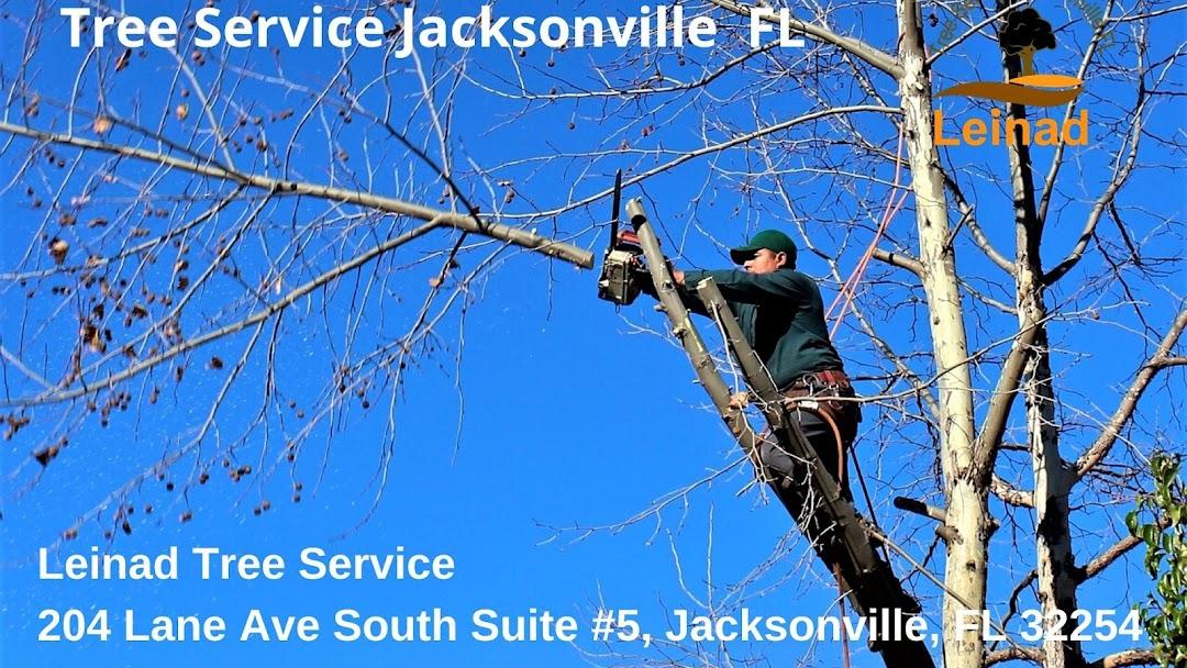 Leinad Tree Service Jacksonville Jacksonville Fl Tree Service Company