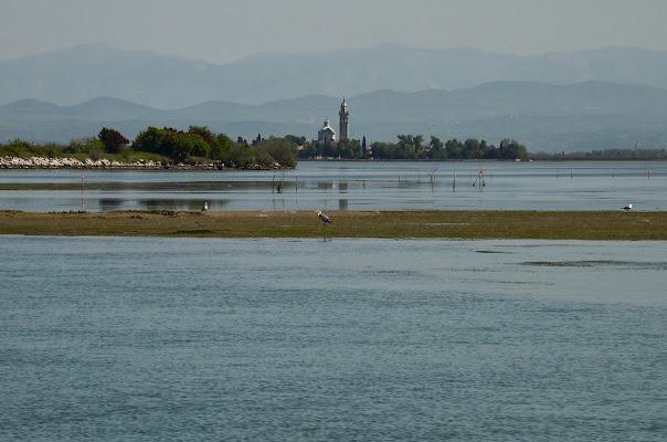 Laguna di Grado di Wilmanna