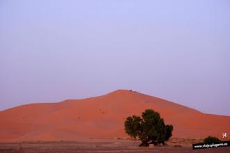 Photo: 23: La visión de la Gran Duna es espectacular, los colores cambiantes de la arena desde el rosado pálido hasta el anaranjado rojizo. Una arena fina y suave y el color que te envuelve, lo convierte en una experiencia inolvidable.