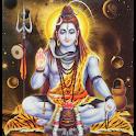 Shivleelamrut श्री शिवलीलामृत icon