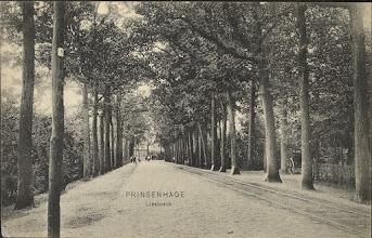 Photo: 1907 Liesboslaan later Oude Liesboslaan