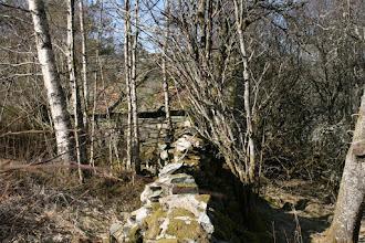 Photo: Uthus i stein med skifer påtaket gøymd i kratt
