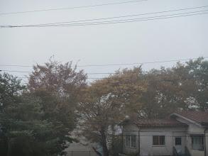 Photo: んで翌朝。驚きの白さorz
